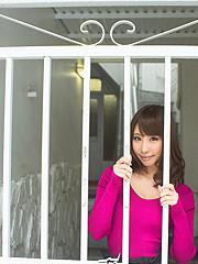 Syunka Ayami 77